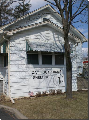 Cat Guardians Shelter