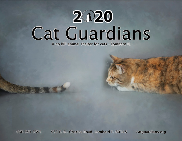 2020 Cat Guardians calendar